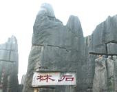 The Stone Forest in Dali Picture