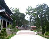Taiqing Palace of Lao Mountain in Qingdao