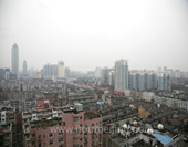 The Bird's-eye View of Wuhan