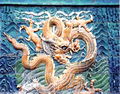 The Photo of Dragon on the Wall