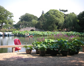 The Photo of The Li Garden in Wuxi