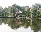 The Picture of The Stone Forest in ShiLin