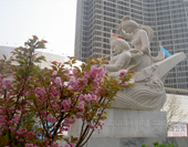 The Sightseeing of Dalian Photo