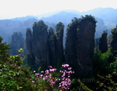 Mountains in Zhangjiajie Park