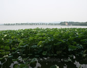 Taihu Lake View