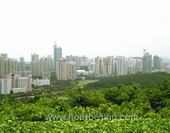 The Picture of Shenzhen City