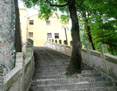 The Stairs to the Building