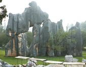 The Picture of Stone Forest in Kunming